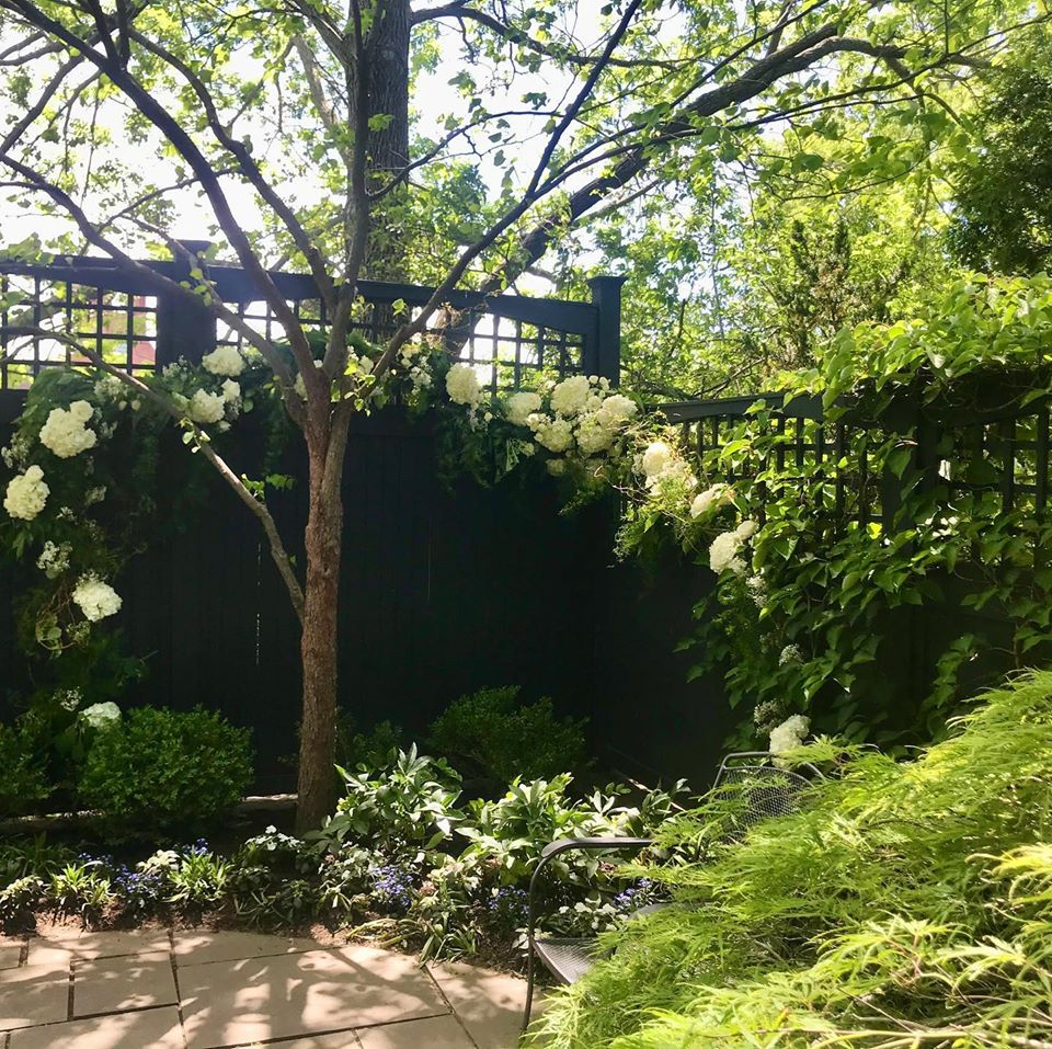 Photograph of floral wedding vine in backyard