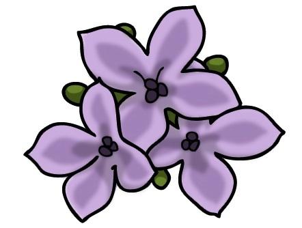 Jeri Solomon Floral Design